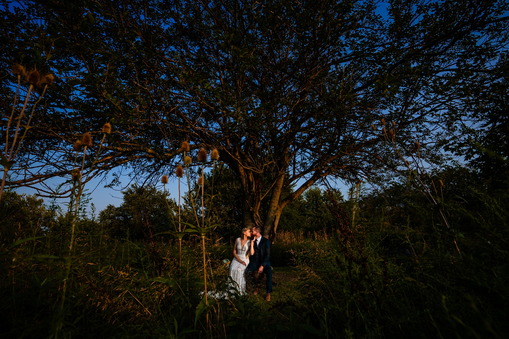 Couple kisses underneath a tree after wedding ceremony in Cincinnati, Ohio by Dayton Wedding Photographer Studio 22 Photography
